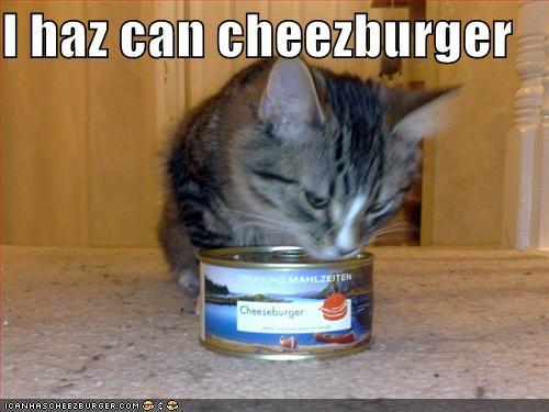 I Haz Can Cheeseburger